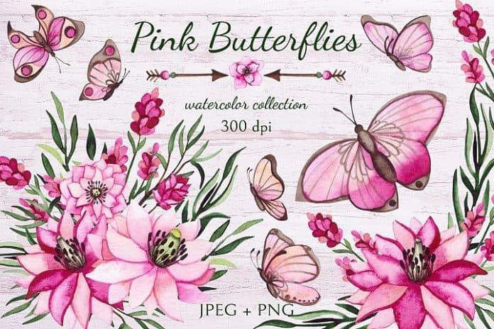 Pinkbutterfly1