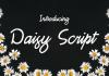 Free Daisy Script Font