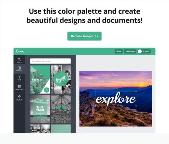 Canva Colour Palette for Templates