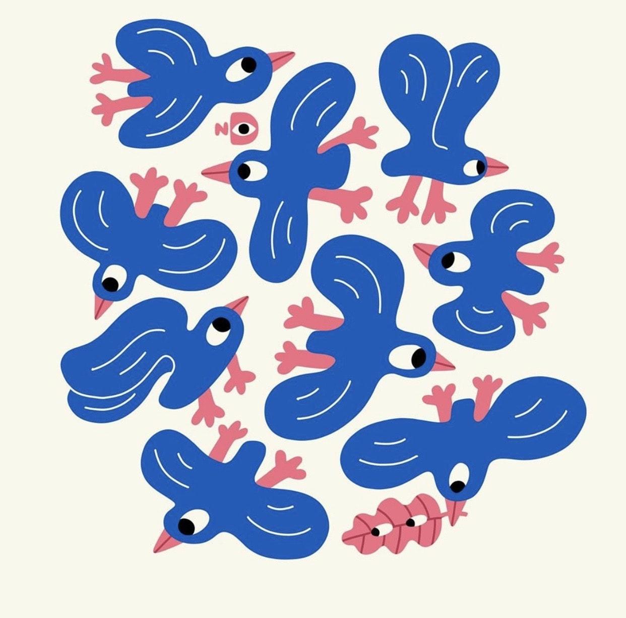 Illustrations of birds by Nina Dzyvulska