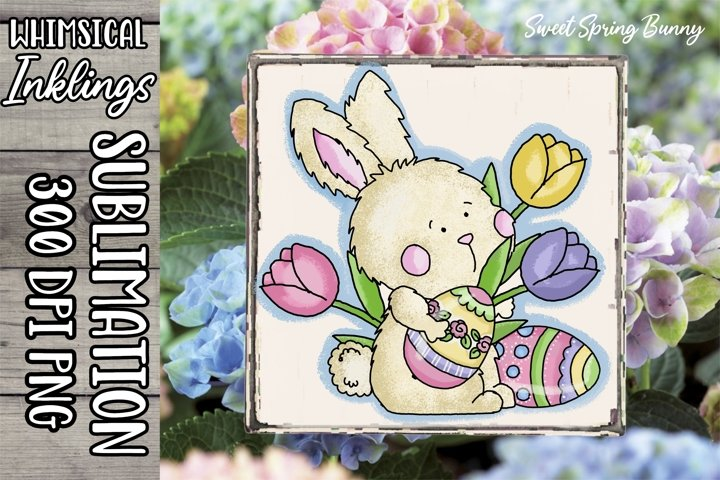 Sweet Spring Bunny Sublimation Clipart