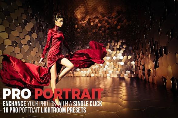 10 Pro Portrait Lightroom Presets